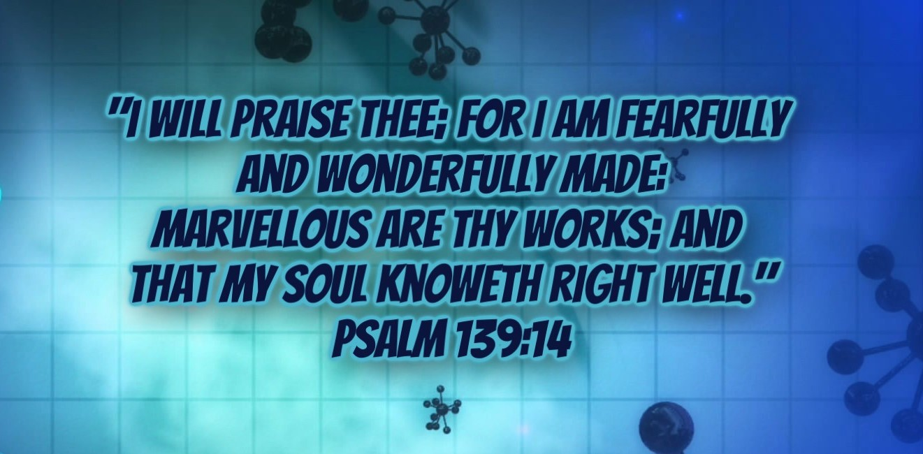 fearfully and wonderfully made_000000